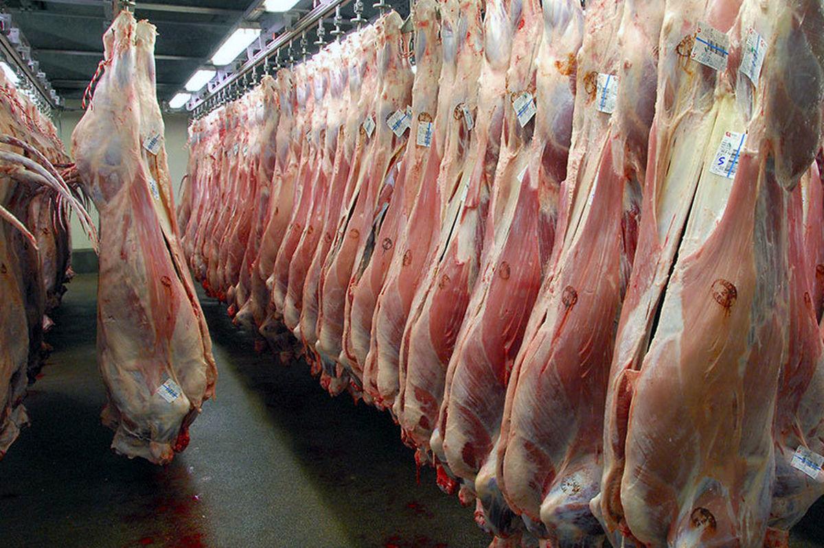 تولید گوشت قرمز در مهر ٩٩، ۵۵ درصد افزایش یافته است