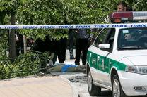 سناتور فرانسوی: هیچ کس از این نوع حملات نفعی نخواهد برد