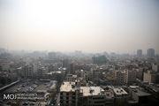 برای مقابله با آلودگیهای محیطی چه بخوریم؟
