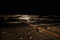 تخمریزی ماهیان مهاجر استخوانی همراه با استرس مرگ