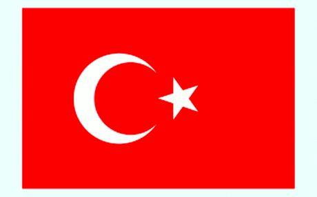 وزارت امور خارجه ترکیه به ملت ایران در پی سقوط هواپیما پیام تسلیت داد