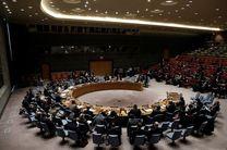 شورای امنیت قطعنامهای برای ممنوعیت تجهیز تروریستها به سلاح تصویب میکند