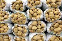 کاهش تولید قیمت را بالا برد/ وعده ارزانی مجدد برای سیبزمینی