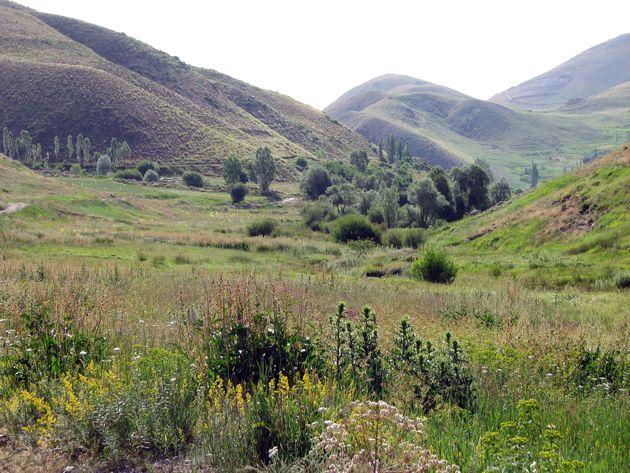 رفع تصرف ۷۷ هکتار از اراضی ملی دماوند