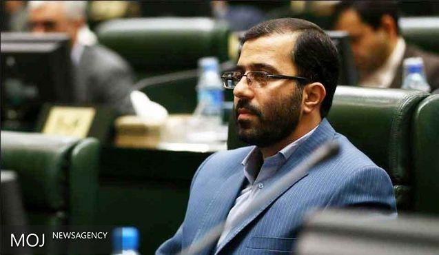 گودرزی و رستمیان اعضای ناظر مجلس در شورای ترویج فرهنگ ایثار و شهادت شدند