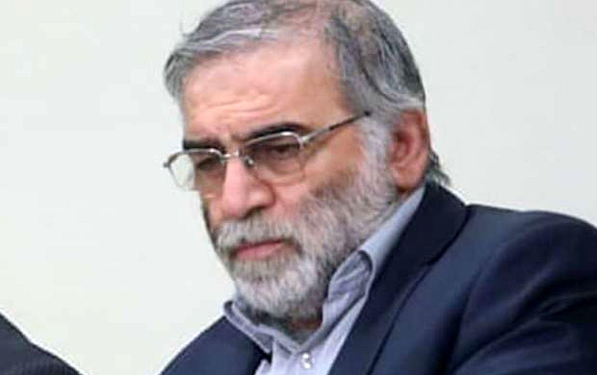 محسن فخری زاده از دانشمندان حوزه هستهای ترور شد