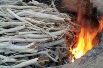 انهدام دو کوره ذغال سازی غیرمجاز در شهرستان بندرلنگه