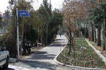 کاشت 220 هزار پیاز گل لاله و 4 هزار گل سنبل در خیابان زرافشان