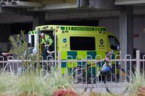 تعداد جان باختگان حادثه تروریستی نیوزیلند به 50 نفر رسید