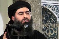 ابوبکر بغدادی به شدت مجروح شده و امکان مرگ وی وجود دارد