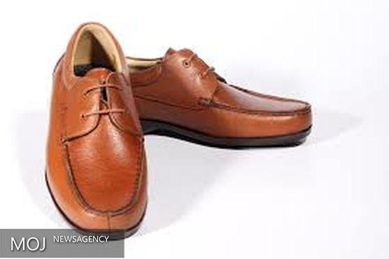 کفشی که به طرحهای مختلف تبدیل می شود