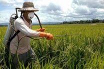 مدیریت حفظ نباتات در سطحی معادل ۲۱.۲۰۸ هکتار به مبارزه با آفات پرداخته است