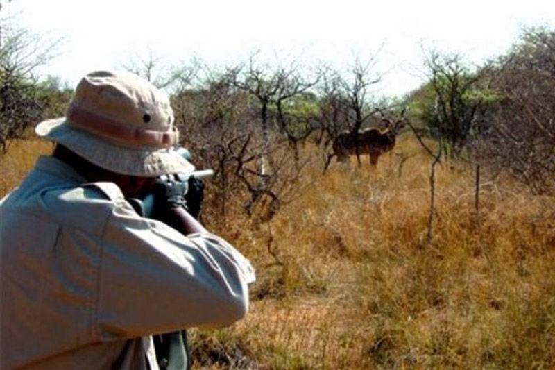 شکارچی متخلف در منطقه حفاظت شده کرکس به پرداخت جزای نقدی  محکوم شد