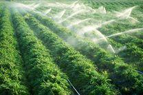 اجرای طرحهای آبیاری نوین در 123 هکتار از مزارع استان اصفهان