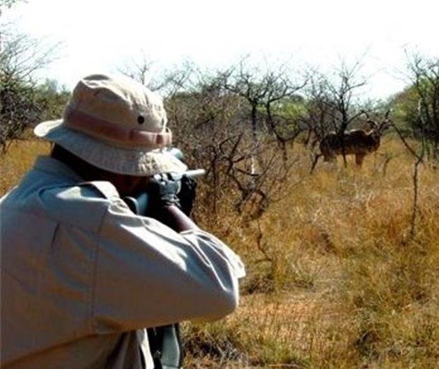 شکارچی متخلف در چنگ قانون