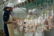 صادرات، عامل افزایش قیمت مرغ در هرمزگان