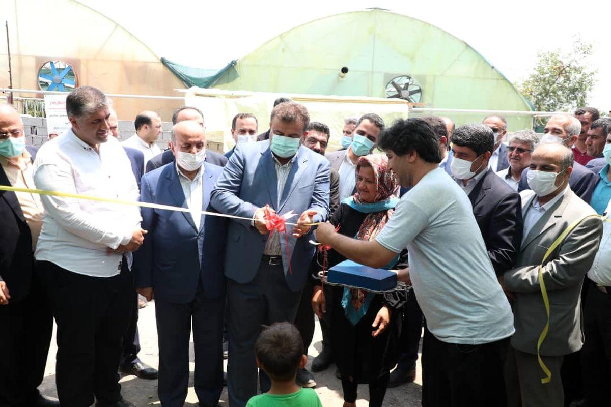 افتتاح 14 طرح تولیدی، صنعتی، کشاورزی و گردشگری در بابل