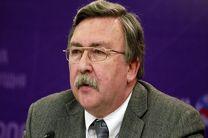 تاکید اولیانوف بر عدم پنهانکاری ایران در خصوص برنامه هسته ای خود