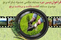 مسابقه عکاسی جشنواره شکرانه برنج با موضوع کاشت ، داشت و برداشت برنج