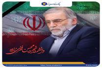 پیام تسلیت مدیرعامل بانک سینا به مناسبت شهادت محسن فخری زاده