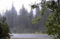 بارش باران در استان گلستان آغاز شد/کاهش 14 تا 18 درجهای دمای هوا