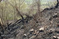 گرمای هوا بلای جان جنگلهای میناب/بیش از ده مورد آتش سوزی در شهرستان میناب