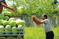کشاورزان لرستان، الگوی کشت را رعایت کنند/از ورود کشاورزان غیربومی جلوگیری شود