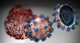 امید های جدید برای درمان کرونا/ نتایج موفقیت آمیز داروی hrsACE2