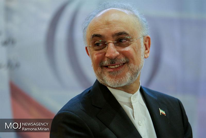 رئیس مرکز نظام ایمنی هستهای روسیه  با صالحی دیدار کرد