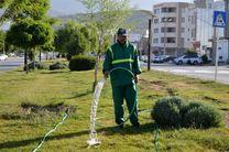 فضای سبز اندیمشک با آب خاکستری آبیاری می شود