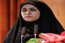 یکی از جنبه های مغفول اجرا و تحقق حقوق شهروندی مشارکت نهادهای غیر دولتی است