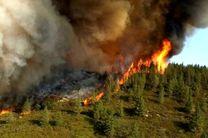 آتش زنندگان مراتع و جنگل ها به ۱۰ سال حبس محکوم میشوند
