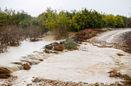 خسارت 1500 میلیارد ریالی سیلاب به بخش کشاورزی آذربایجانغربی