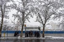 بارش برف پاییزی در تهران / پیش بینی کاهش ۵ درجه ای هوا