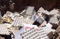 کشف و معدوم سازی بیش از 18 تن تخم مرغ فاسد در اصفهان