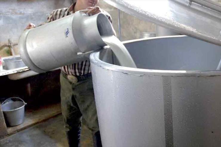 تقلبی بودن شیر 99 درصد لبنیاتی های سنتی همدان