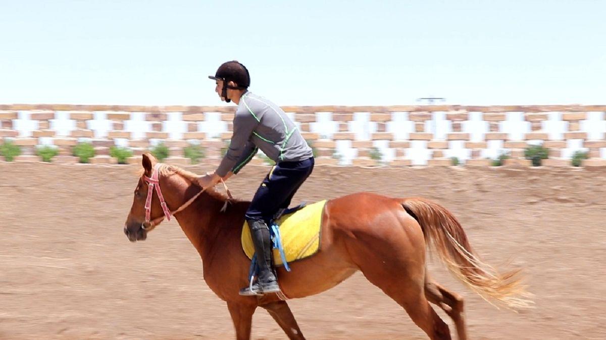 راه اندازی 2 باشگاه اسب سواری در شهرستان مشگین شهر
