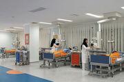 اجرای طرح همیار درمان دراصفهان