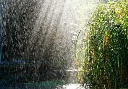 پیش بینی رگبارهای پراکنده باران در شیرکوه از بعدازظهر سه شنبه