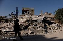 197 هزار راس دام سبک و 3800 راس دام سنگین در زلزله کرمانشاه تلف شدند