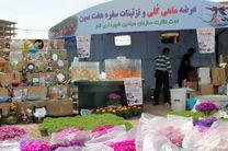 جانمایی اولیه غرفه های موقت عرضه و فروش ماهی گلی و مصنوعات تزئینی سفره هفت سین