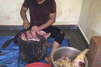 استفاده از گوشت سگ در اهواز محرز نیست