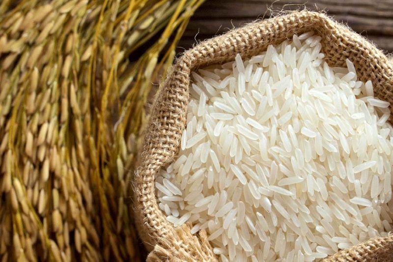 سه ماه پیش نوسانات قیمت را در برنج پیش بینی کرده بودیم