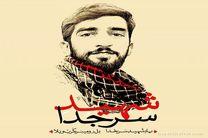 حضور سینماگران در مراسم تشییع شهید حججی
