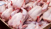 ادعاها  درباره خرید پوست مرغ توسط مردم صحت ندارد / قیمت گوشت مرغ تغییر نمی کند