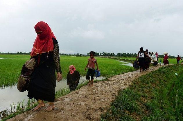 شبهنظامیان روهینجایی آتشبس یکماهه و یکجانبهای اعلام کردند