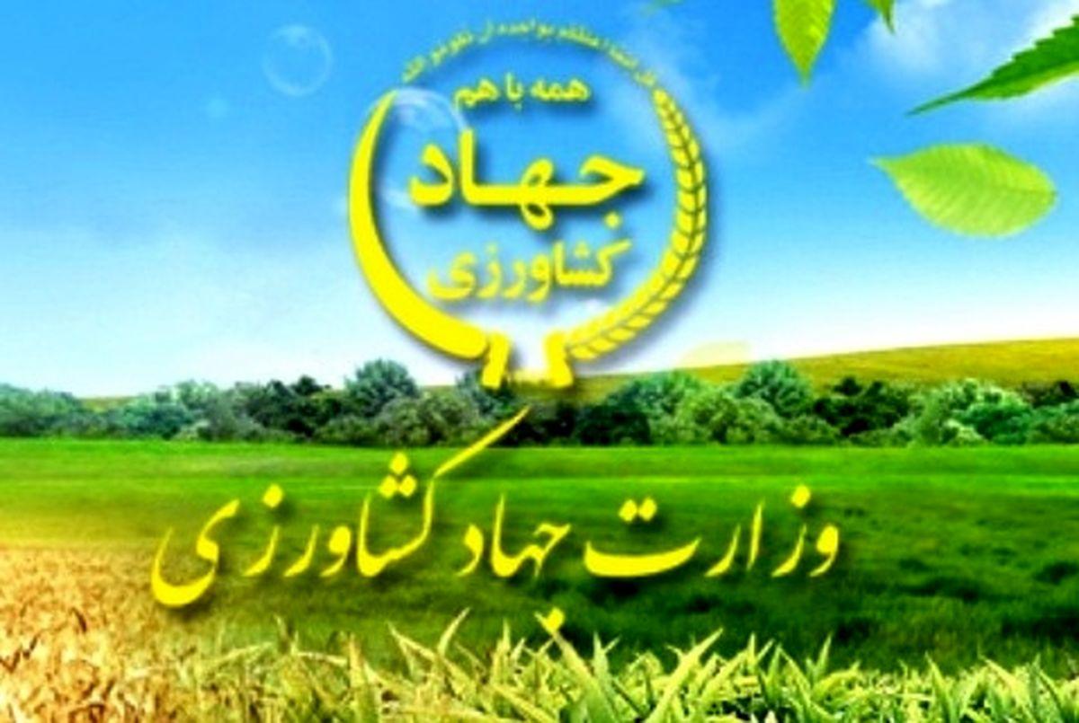 تقدیر مقام عالی وزارت جهاد کشاورزی از روابط عمومی جهاد کشاورزی یزد