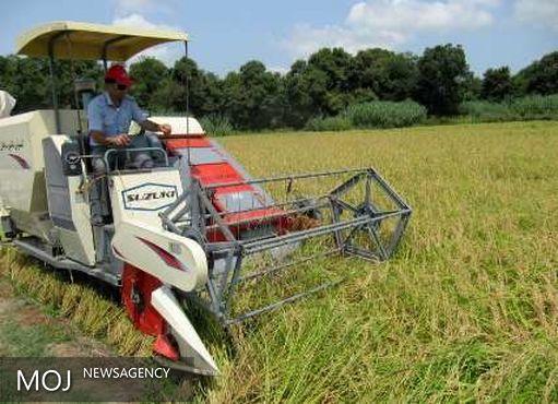 کشت برنج در تمام استانها به جز گیلان و مازندران باید متوقف شود