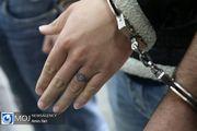 دستگیری ۲ موبایل قاپ پارک های غرب پایتخت