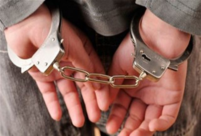 پرده از راز 12 فقره سرقت در بندرعباس برداشته شد